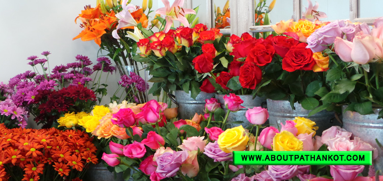 Mahavir Flower House