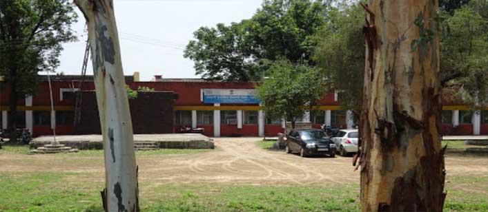 Government Industrial Training Institute