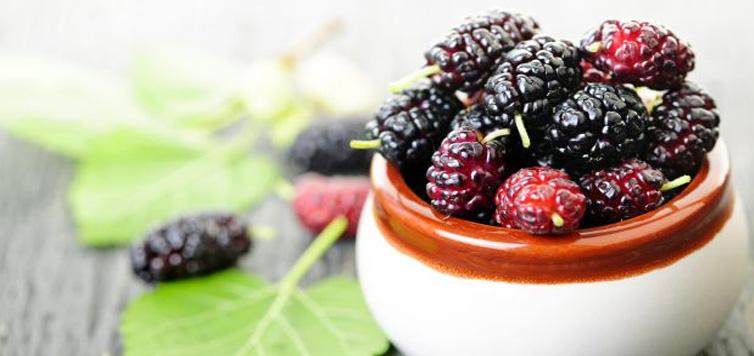 8 Amazing Mulberry Benefits