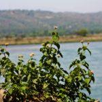 Madhopur