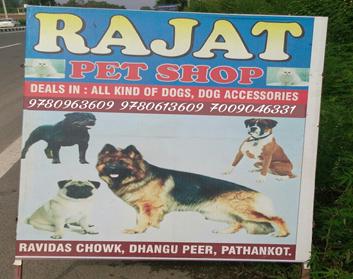 Rajat Pet Shop