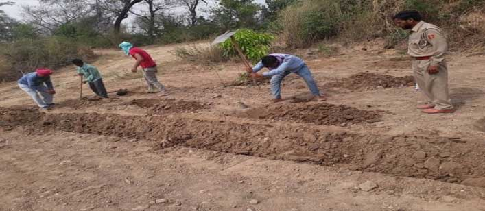 अवैध कब्जाधारियों से छुड़ाई 20 एकड़ भूमि