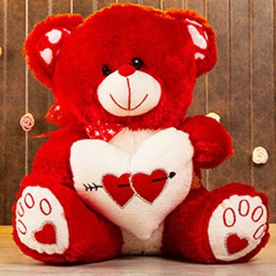 Cute Teddy Medium Size