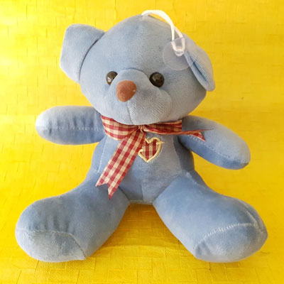 Teddy Small Blue