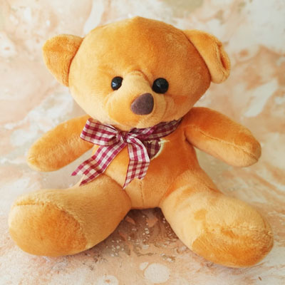 Teddy Small Brown