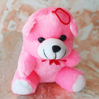 Teddy Small Pink