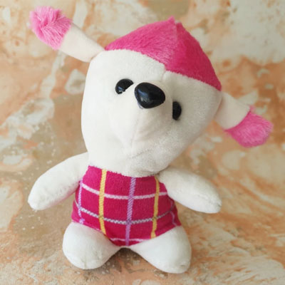 Teddy Small Pink White