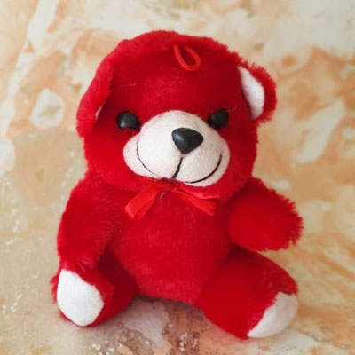 Teddy Small Red