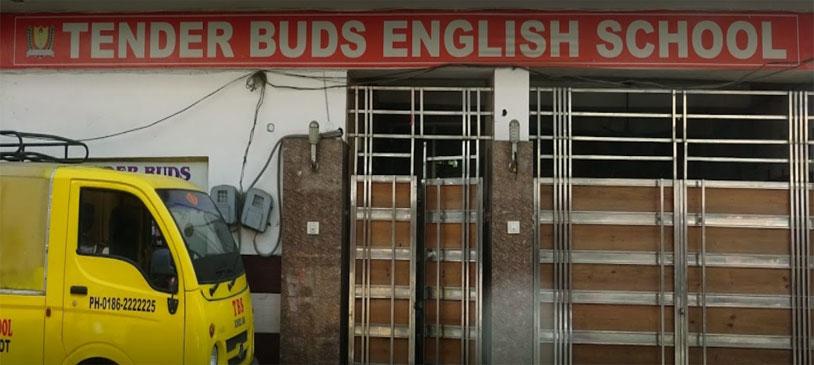 Tender Buds English School