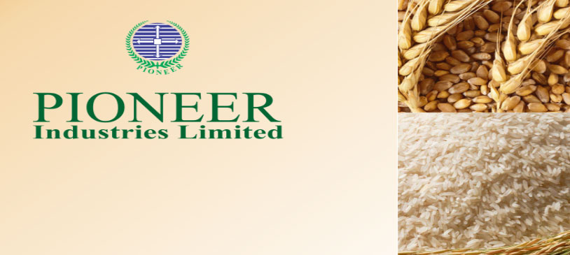Pioneer Industries Limited