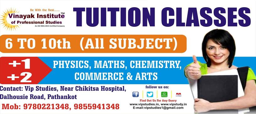 Vinayak Institute of Professional Studies